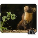 small-animals-frette-animal-mouse-pad-mousepad
