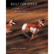 Built for Speed: A Year in the Life of Pronghorn