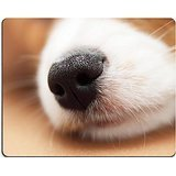 MSD Natural Rubber Gaming Mousepad IMAGE ID: 37566683 The nose of the dog that is sleeping close up