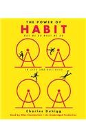 The Power of Habit: Why We Do What We Do in Life and Business [ THE POWER OF HABIT: WHY WE DO WHAT WE DO IN LIFE AND BUSINESS ] By Duhigg, Charles ( Author )Feb-28-2012 Compact Disc