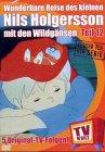 Wunderbare Reise des kleinen Nils Holgersson mit den Wildgänsen, DVD-Videos, Tl.12 : Abschied von Smirre; Eine schwere Entscheidung; Das Gold auf der ... Heimkehr; Abschied von den Wildgänsen, 1 DV