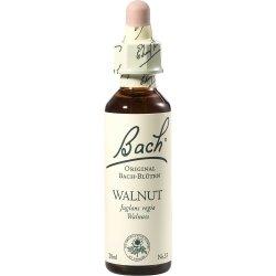 BACHBLÜTEN Walnut Tropfen 20 ml Tropfen