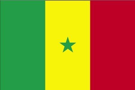 *** PROMOTION *** Drapeau Sénégal - 150 x 90 cm (Uniquement chez le vendeur PLANETE SUPPORTER = 100% conforme à l'image)