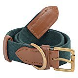 #7: All Natural Material Small Dog Collar - 100% Cotton Canvas With Sturdy Solid Brass Clasp All Hand Made (Green Color Small Size) Width: 3/4 inch (Suitable for Neck Size 13-17 Inches)- VamaLeathers