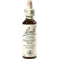 BACHBLUETEN Chestnut Bud Tropfen, 20 ml