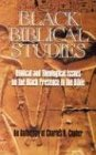Black Biblical Studies: An Anthology of Charles B. Copher: Biblical and Theological Issues on the Black Presence in the Bib by Charles B. Copher (1993-02-02)