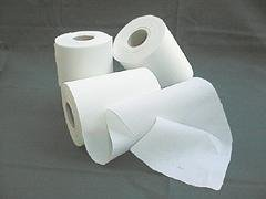 2 Rollen Windelvlies (2x100 Blatt) 16x38cm sauerstoffgebleicht