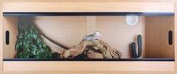 Terrario Haya 110x60cm