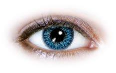 2 Aqua Blaue Kontaktlinsen 12 Monatslinsen ohne Stärke inkl. 1 Gratis Kontaktlinsenbehälter für 2 blaue Kontaktlinsen Auqa für dunkle Augen