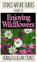 A Guide to Enjoying Wildflowers