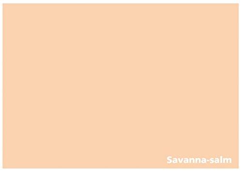 r - Tonzeichenpapier - 100 Blatt DIN A4 - 160g/m² Farbe: Savanna-salm (22339) (Farbigen Cardstock)