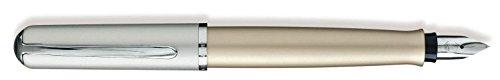 Pelikan 936914 Füllhalter Epoch P360, F, titan-silber