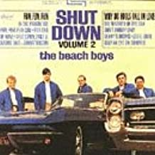 Shut Down, Vol. 2 [Vinyl LP]