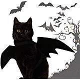 DOLM Halloween-Kostüm, Flügel, für Katzen, Hunde, Cosplay, lustiges Party-Accessoire
