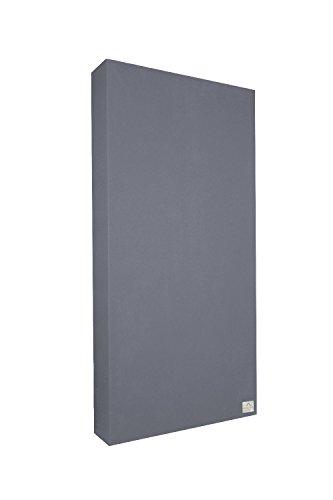 Schallabsorber Standard 100x50x11 cm by Addictive Sound - Raumakustik Akustikbild - Viele Farben - Dunkelgrau -