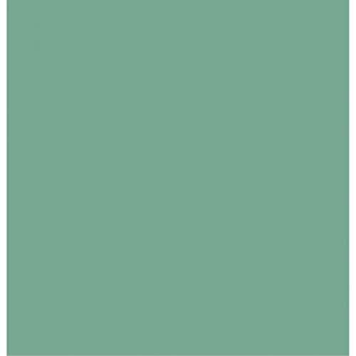 Seidenpapier, säurefrei, 20 x 30 cm, verschiedene Farben erhältlich, 10 Blatt 20x30 inches cedar green - Cedar 20