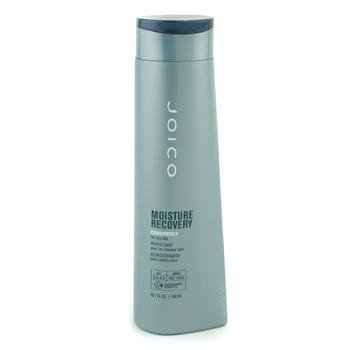 JOICO by Joico: MOISTURE RECOVERY CONDITIONER FOR DRY HAIR 10.1 OZ by Joico