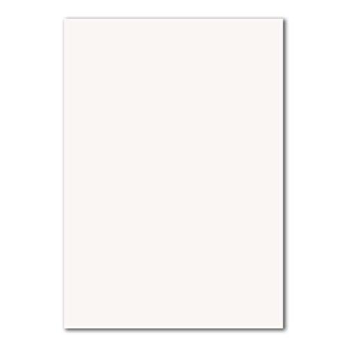 DIN A4 Karten Planobogen - Hochweiss | 50 Stück | 240 g/m² | Bastelbogen - Kartenkarton - Bastelkarte | 210 x 297 mm | formstabil | für Drucker geeignet | PREMIUM Qualitätsmarke: NEUSER FarbenFroh