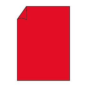 Paperado 100gsm A4-Papier-Tomate (Pack von 10) - Tomaten-pack