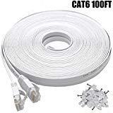 Intelart Cat 6 Ethernet-Kabel 100FT-White 100FT-White