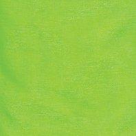 Club Green Ruban d'organza, Citron Vert, 70 mm x 25 m
