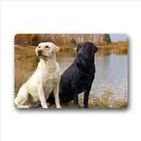 (Feesoz Personalisierte Clever Labrador Retriever Entrance Mat, für Innen-/Außenbereich Fußmatte, Tür Mats 59,9x 39,9cm)