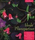 Ideale Pflanzpartner - David Stuart
