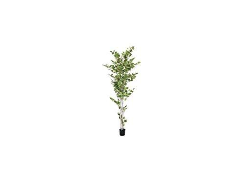 Europalms Birkenbaum im Gärtnertopf, 210cm, Kunstbaum, 1102 Blätter - 3