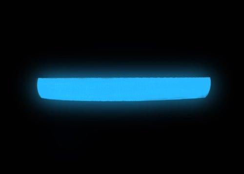 """Hunde Leuchthalsband LED Halsband Hundehalsband Hunde-Halsband """"Zandoo"""" Leuchthalsband für Hunde in der Farbe blau Größe S (35-40 cm) NEU von der Marke PRECORN - 2"""