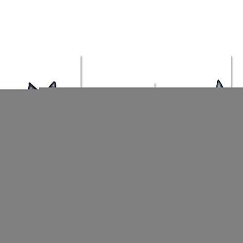 20 Schwarz-tintenstrahl (ZHUANG Dekorative Malerei Lustige Schwarz Poster Drucke Leinwand Malerei Leinwand Wandkunst Minimalistischen Tiere Bild Für Wohnzimmer Dekor, 20X25 Cmnoframe, Kombination)