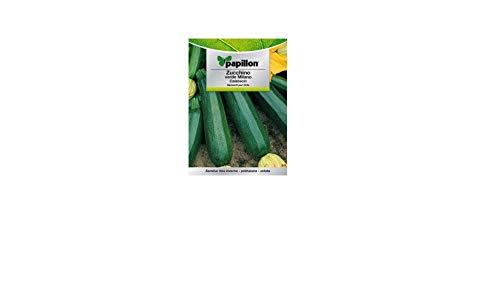 Semences calabacin Vert foncé (5 grammes)