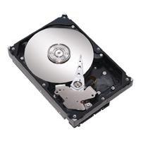 Maxtor 6A250E0 DiamondMax 21 Festplatte 250.0 GB S-ATAII / 300 8.0 MB -