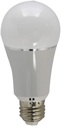 Bombilla LED con cambio de color WiFi – RGB + luz diaria,...