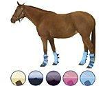 Centaur Super Fly Stiefel, 4 Stück, Größe: Pferde/Warmblut, Farbe: Himbeere/Fuchsia, Himbeere/Fuchsia, 4 Stück