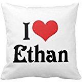 i-love-ethan-allen-pillow-case