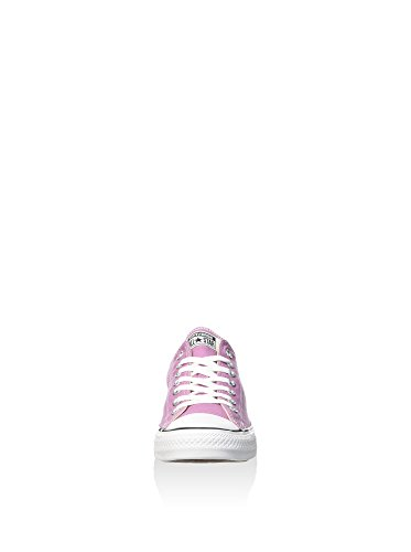 Converse Powder Purple EU Viola polvere