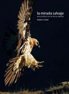 Mirada salvaje por Andoni Canela