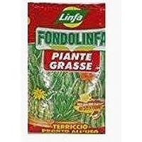 LINFA fondolinfa Plantas Crasas Sustrato Pronto al Uso para Plantas crasas y suculentas de Unidades de 10l