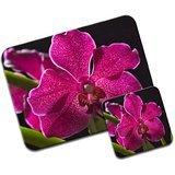 Orchidea delle Hawaii color Magenta screziata & Green Leaves & Tappetino per mouse e sottobicchiere