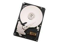 Hitachi Ultrastar A7K1000 - Festplatte - 500 GB - Sata-32 Mb Puffer