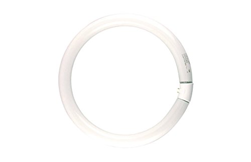 Sylvania - Lámpara luxline circular fc40w/865 t9 g10q