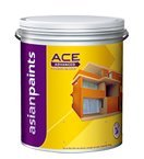Exterior Paints - Best Reviews Guide