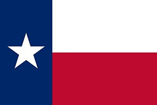 Bandiera bandierina Texano cuciture rinforzate-Flag per motociclette custom-Harley-Trikes... - Tex Texas Flag