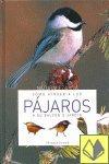 Cómo atraer a los pájaros a su balcón o jardín por Elisabetta Gismondi