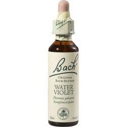 BACHBLÜTEN Water Violet Tropfen 20 ml Tropfen