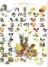 Exoten - Gemüse