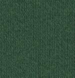 50g Regia Classic - Farbe: 327 - Tanne - die Klassische Sockenwolle in höchster Qualität und größter Farbauswahl