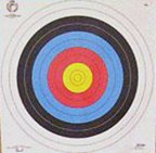 Archery Target Faces 25x60cm with target pins