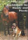 Bachblüten für Pferde und Hunde