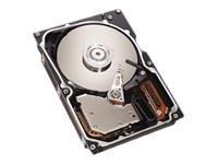 Seagate Cheetah 10K.6Laufwerk (ST373207LW) 73GB Festplatte -